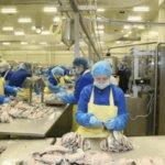Прямой работодатель, работа на рыбе в Польше teeal.pl