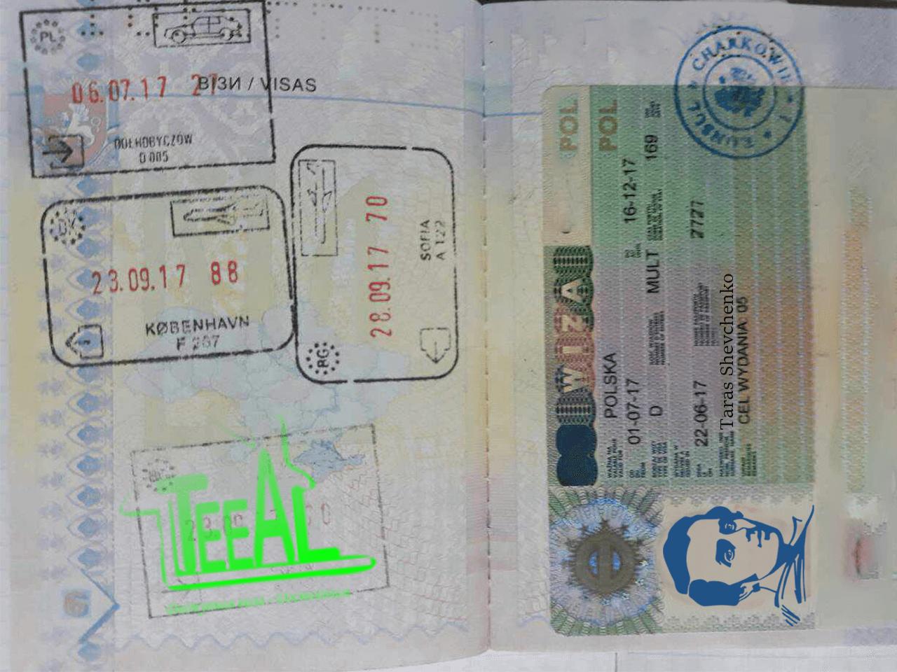 рабочая виза d05 teeal pl