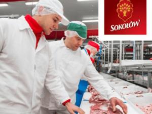 работа на мясокомбинате в Польше SOkolow