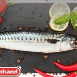 Работа в Польше, рыбный завод