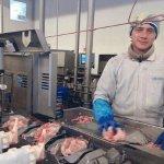 Agrofirma Witkowo работа с птицей в Польше