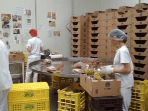 Производство хлеба, vital работа в Польше