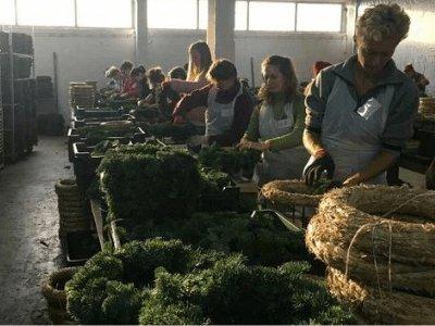 Изготовление украшений из искусственных цветов, NATURE GREEN. <span class=''priezd'>Приезд' из Украины (карантин) 25.09</span>
