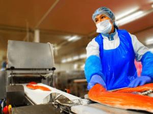 Очищение и нарезка филе рыбы, MIRKO