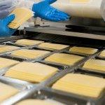 Производство сырной массы, ETOILA