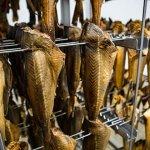 Переработка рыбы, HUR-POL