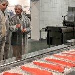 Переработка лосося, ALMAR